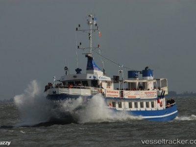 MS Jan Cux II 3